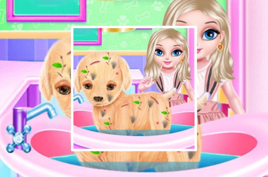 Baby Elsa Puppy Surgery