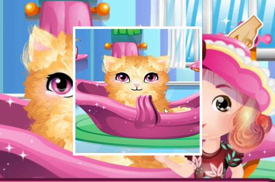 Stray Kitty Care